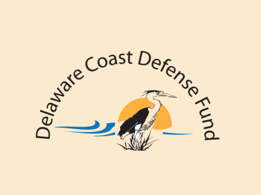Delaware Defense Fund