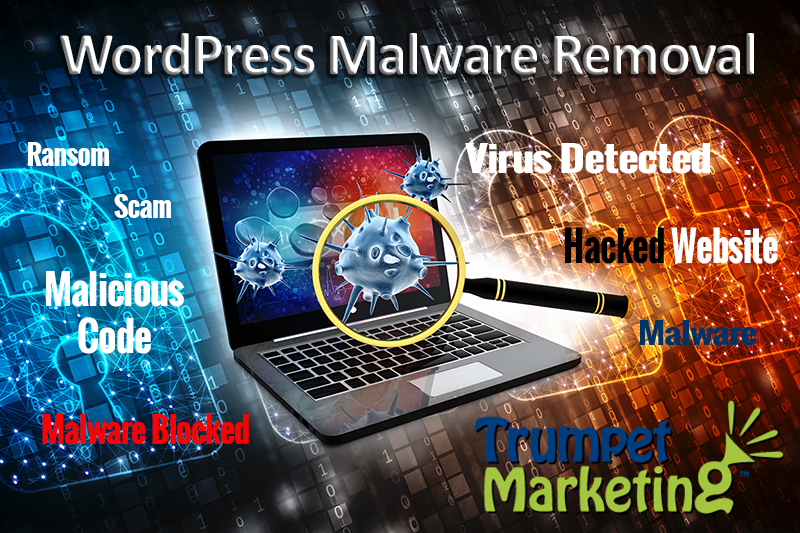 WordPress website malware removal